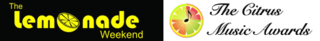 Lemonade-Citrus-Banner468